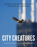 City Creatures | Book Cover