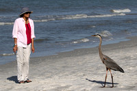 Tena and Great Blue Heron on Indian Shores Beach